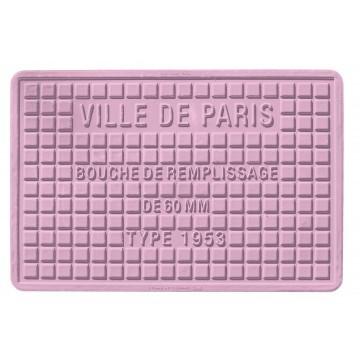 Streetcover 'Parijs' 30x45 cm - Lila